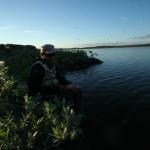 Laksefjordvidda 2014 048